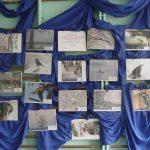 Wystawa prac laureatów konkursów fotograficznych 2013-2015 SP Jasienica